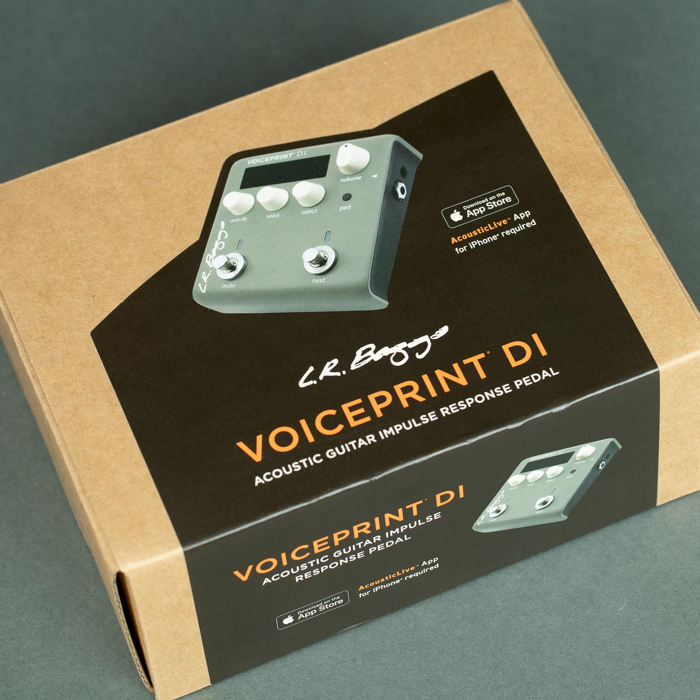L.R. Baggs Voiceprint DI