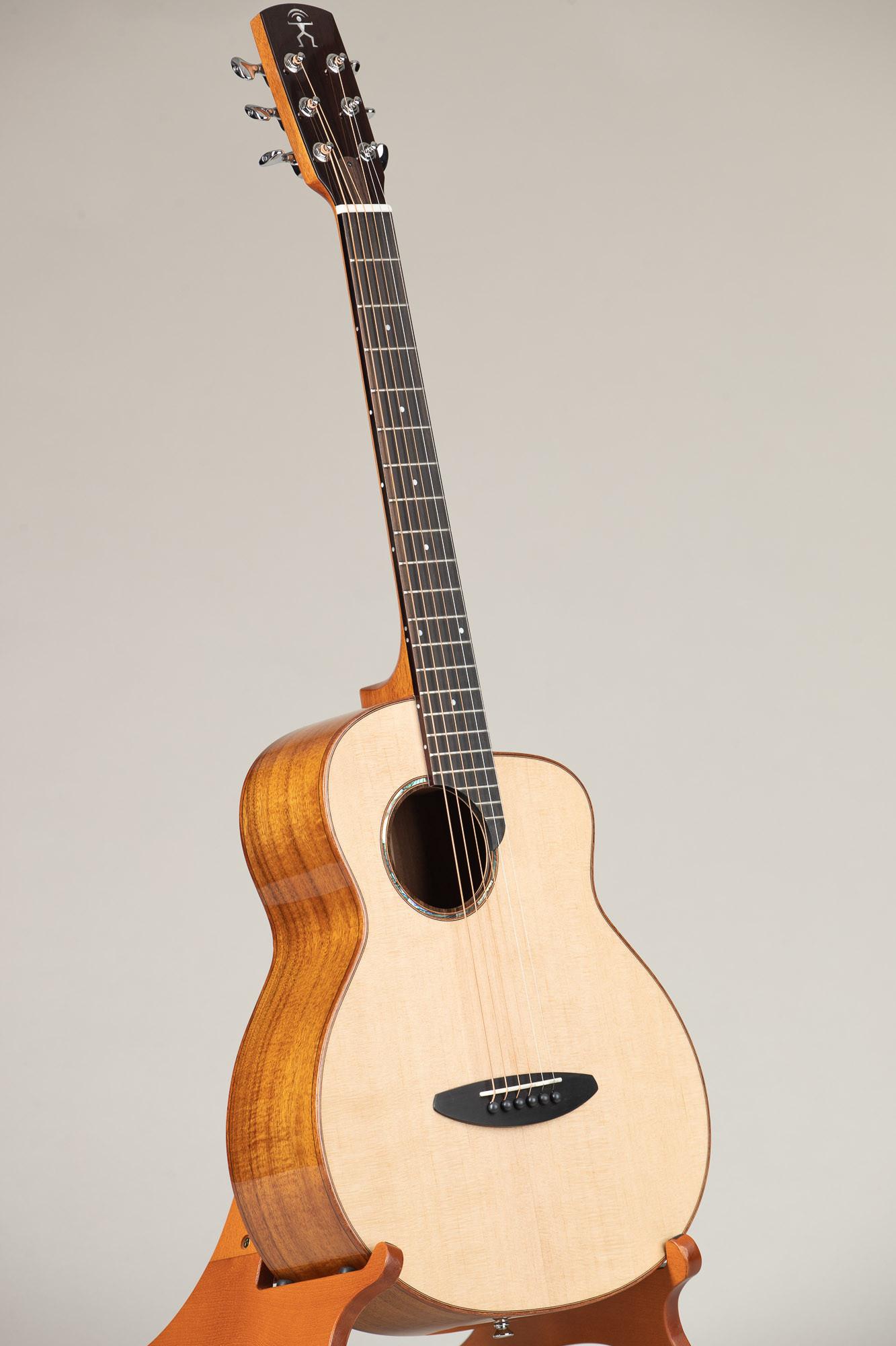 aNueNue Traveler Series Guitar (M52)