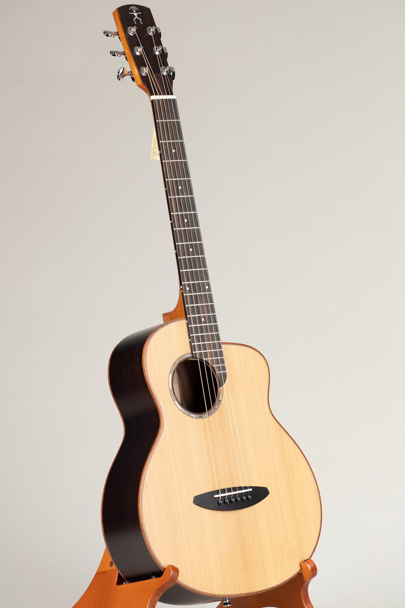 aNueNue Traveler Series Guitar (M60)