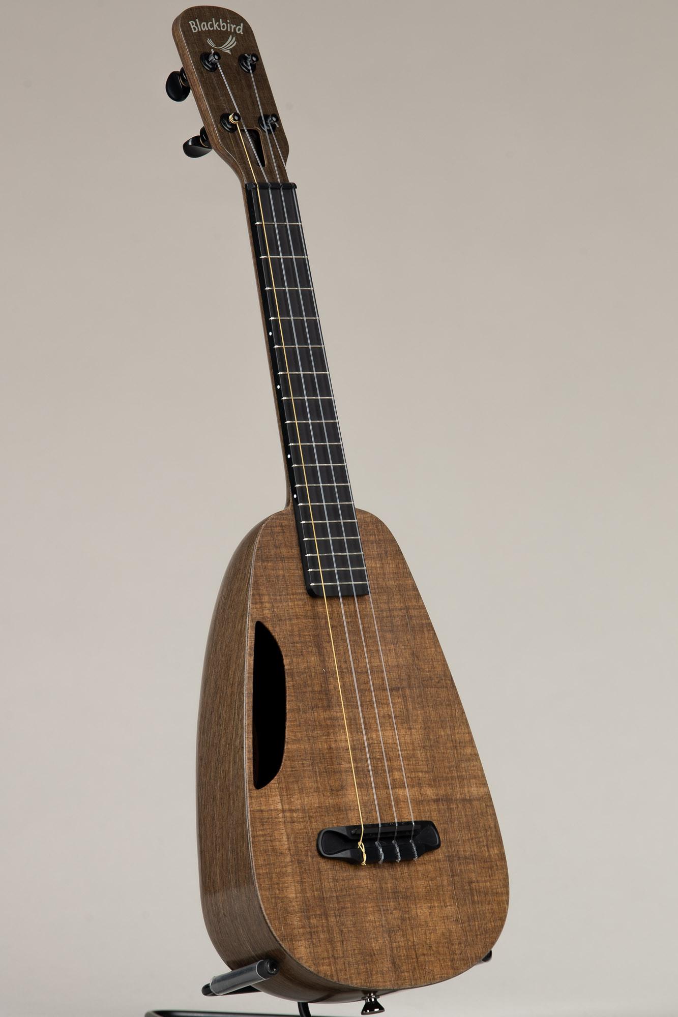 Blackbird Concert Ukulele (Clara 3270)