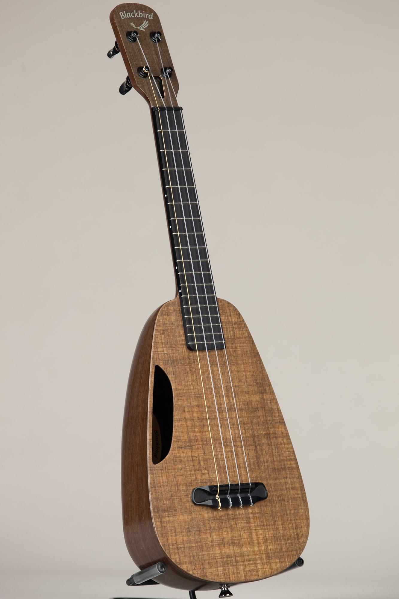 Blackbird Concert Ukulele (Clara 3292)