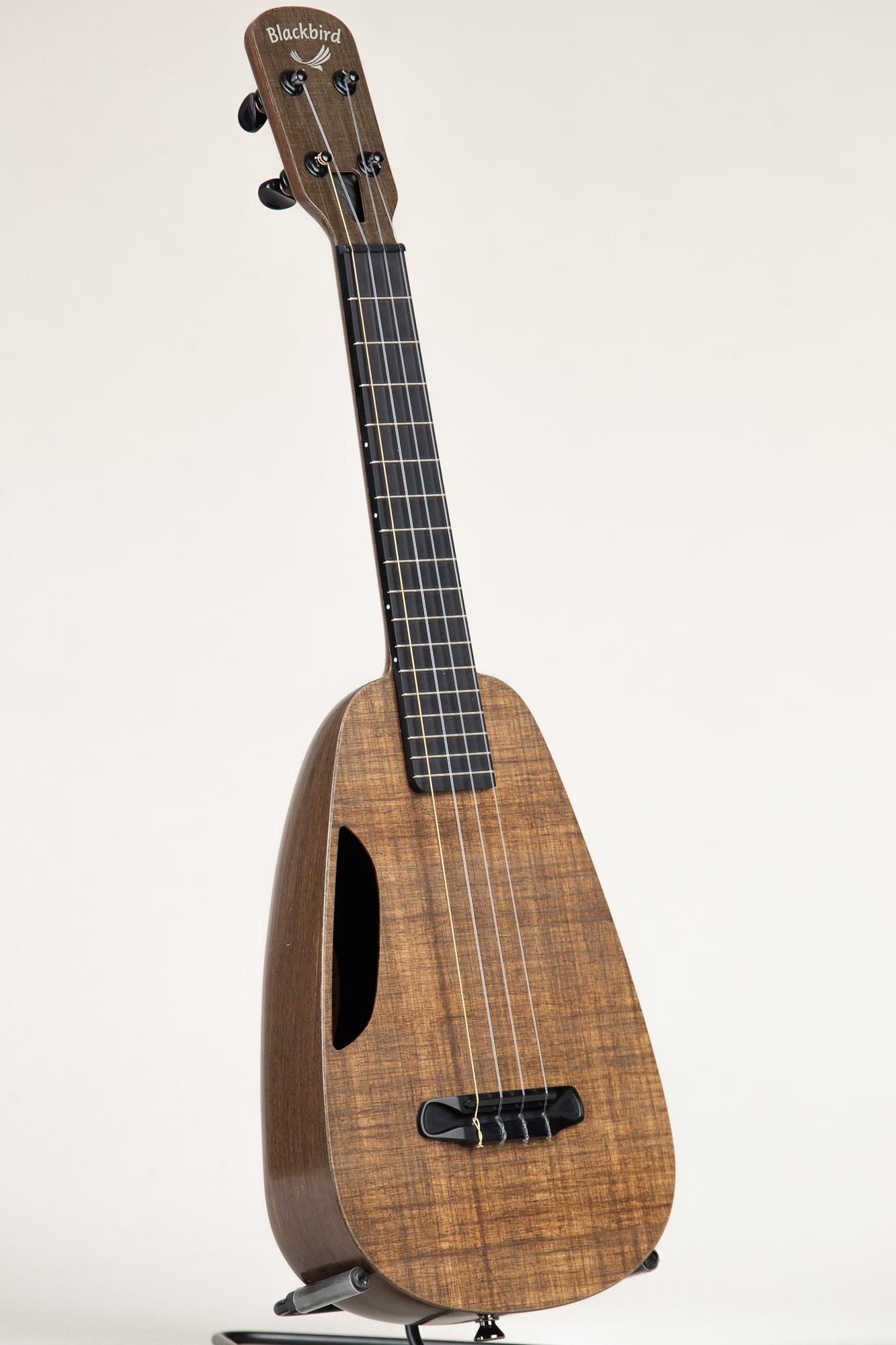 Blackbird Concert Ukulele (Clara 3304)