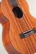Kamaka Tenor 6 String (HF-36 210509)