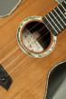 """Kanile'a Alaskan Rainbow Cedar Cocobolo Super Tenor 19 (Custom-ST 19"""" Tru-R #22631)"""