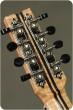 Manley Custom Steel 8 String Tenor