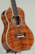 Petros Custom Tenor Ukulele (Curly Sinker Redwood/ Koa #67)