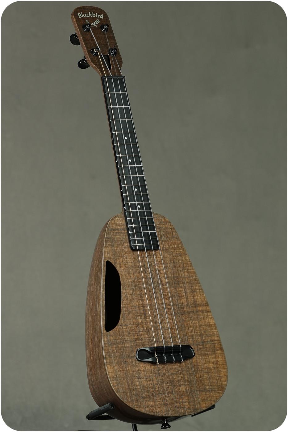 "Blackbird ""Clara"" Concert (2985 Radius Fretboard)"