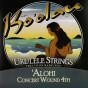 Ko'olau 'Alohi Strings - Concert (2 Options)