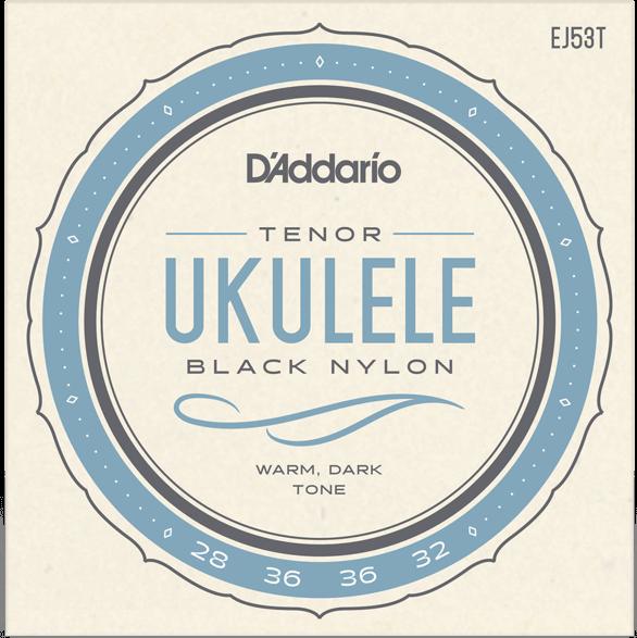 D'Addario EJ53T Pro-Arte Black Nylon High G with Wound C